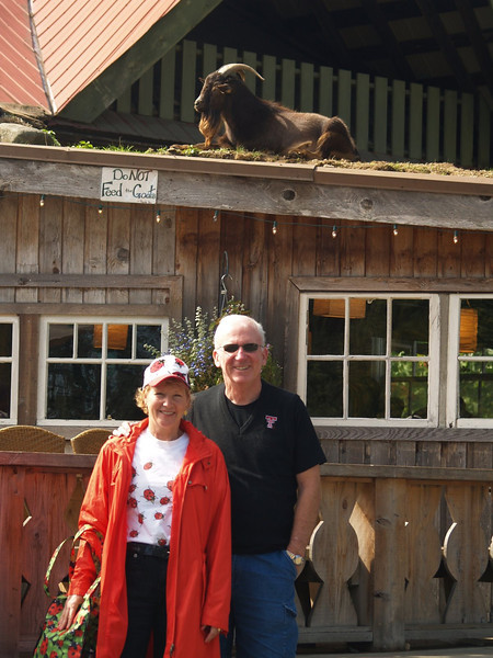 "Took a side trip to Coombs so Mike and Linda could see the infamous ""goats on the roof""."