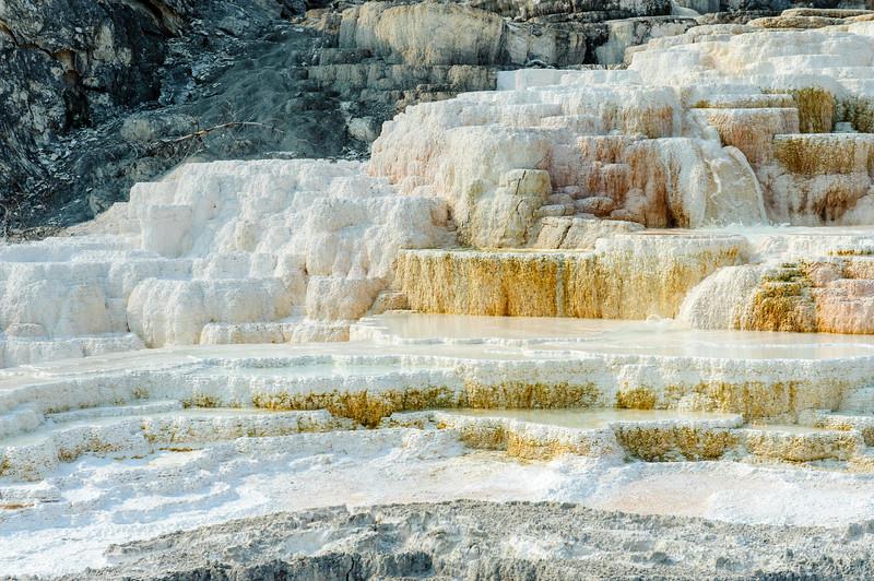 20130816-18 Yellowstone 213.jpg