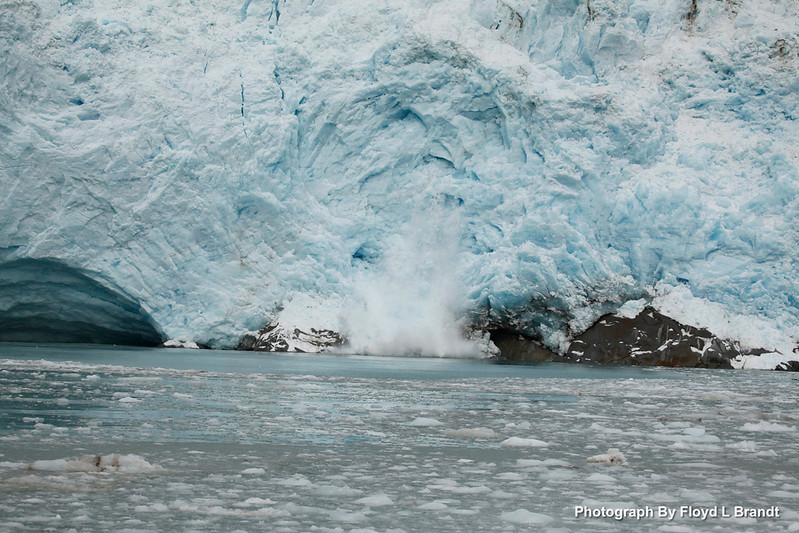 Alaska Kenai Fjords0081.JPG