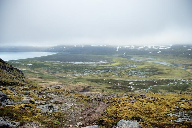 Hornvíkin