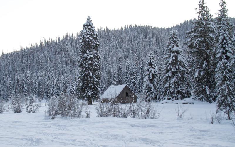 winter 2015-9856.jpg
