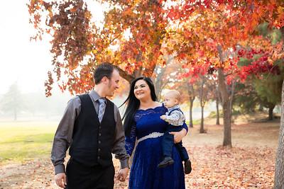 A Ellis Family 2018