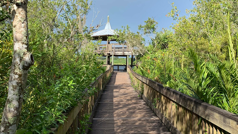 Observation tower at the end of the boardwalk