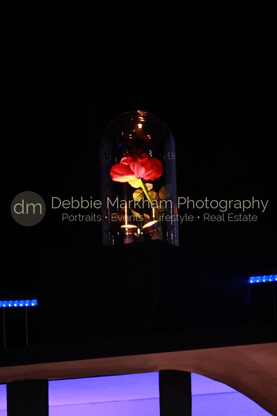 DebbieMarkhamPhoto-Opening Night Beauty and the Beast098_.JPG