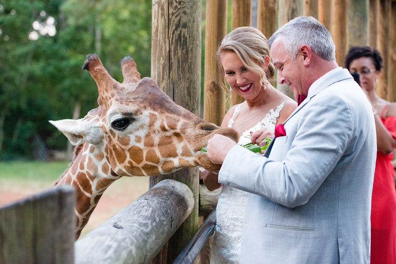 2017-09-02 - Wedding - Doreen and Brad 6186.jpg
