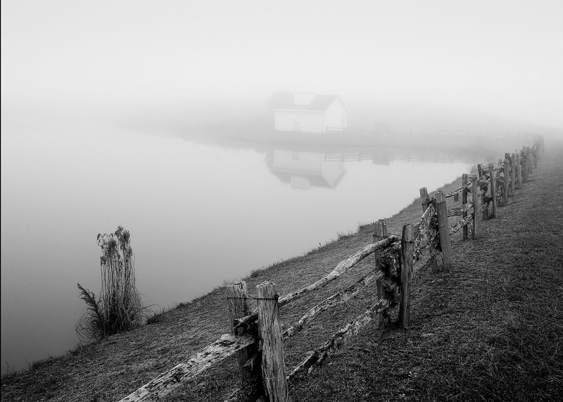 swan lake fog_bxw 5920.jpg