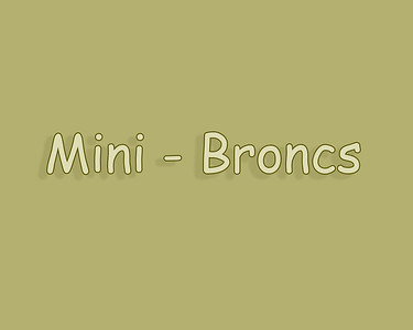 Bow Island 2018 Mini Broncs
