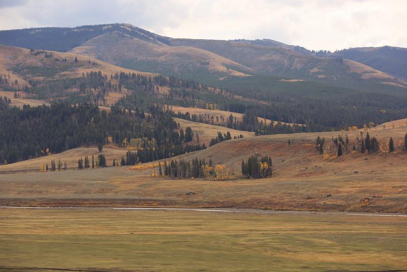 Lamar Valley 002