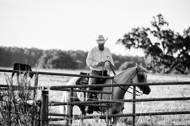 Breely Barthle Ranch B&W 3 (19 of 46).jpg
