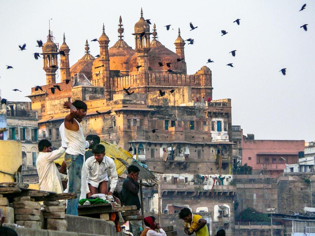 Birds and Buildings, Varanasi, India