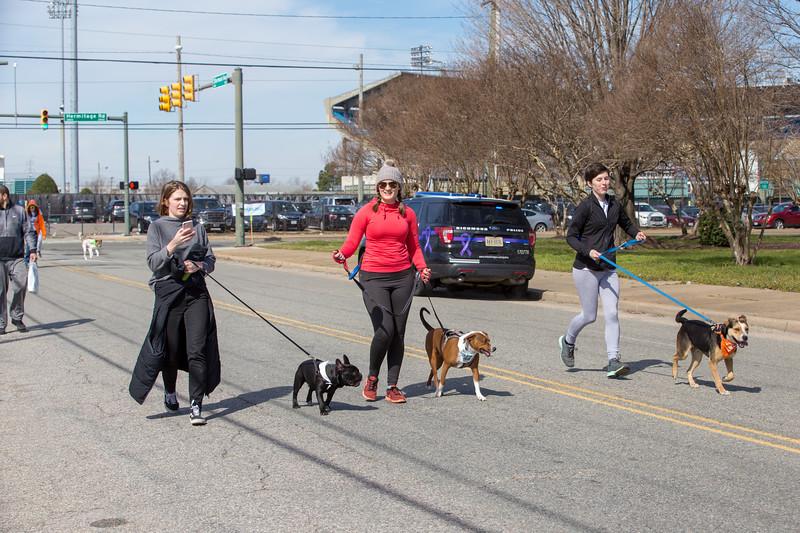 Richmond Spca Dog Jog 2018-717.jpg