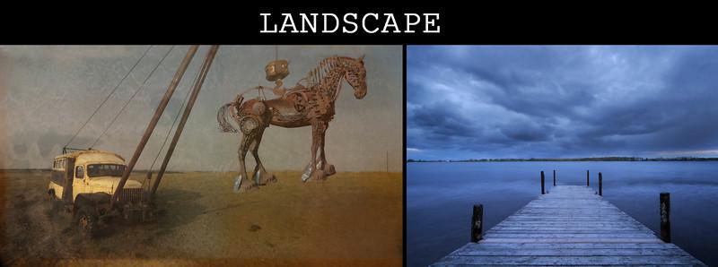 equine portrait final copy 6.jpg