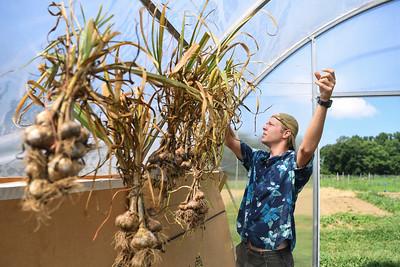 34727 Organic Research Farm Interns July 2018