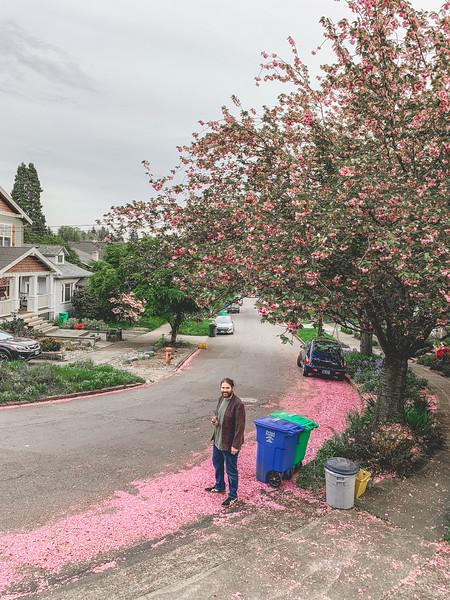 2019-04-25 Portland-42.jpg