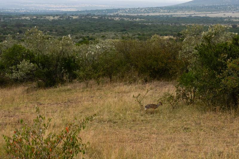 2016 Mercy House Vision Trip Kenya - Day 5 076.jpg