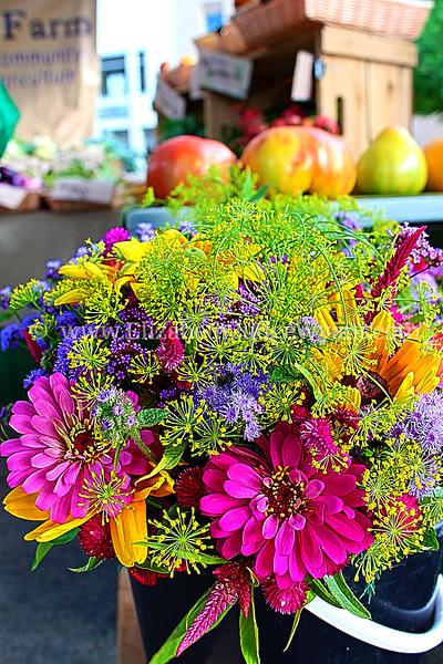 Easton Farmers Market, Easton, PA 7/24/2013