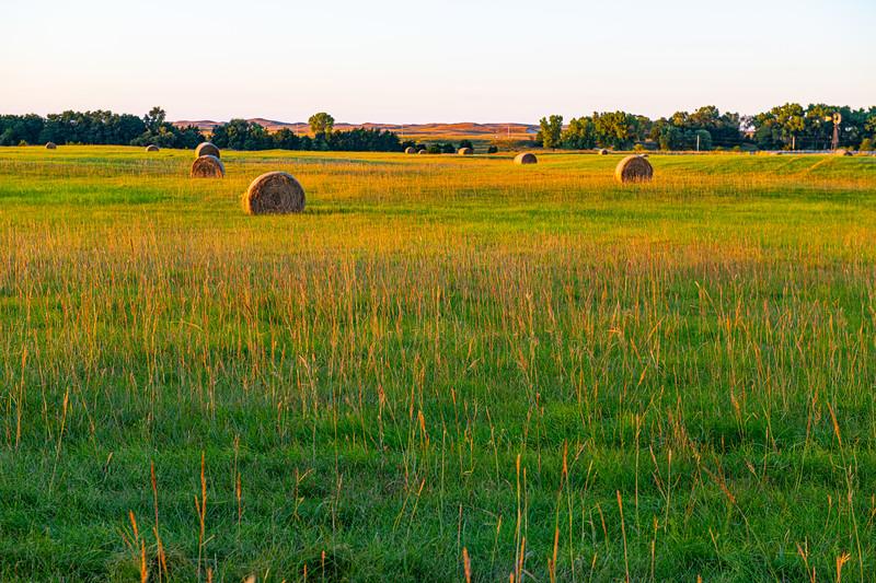 Horn Ranch-1635.jpg