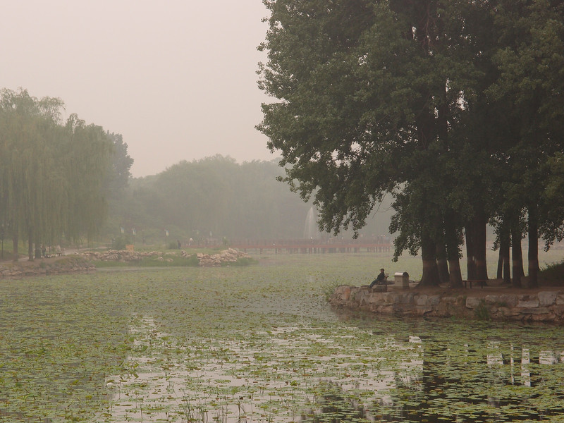 20120513_1150_0276 YuanMingYuan (Beijing time 0950)