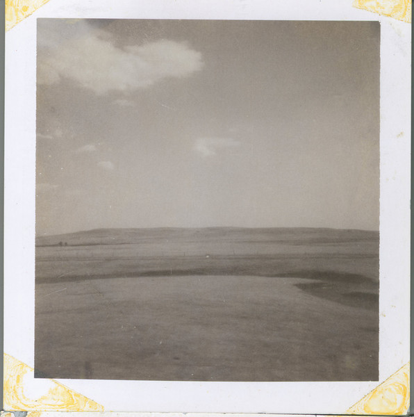 First Photos Taken with a Zip Polaroid Land Instant Camera