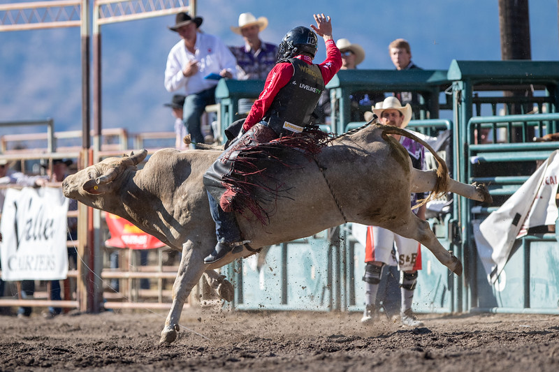 2019 Rodeo 5 (120 of 574).jpg