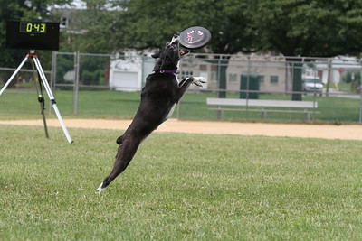 York Skyhoundz Local - 6/18/11
