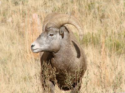 Colorado - October 2010
