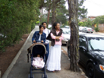 Carmel 2009