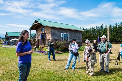 Lavender Farms July 2014
