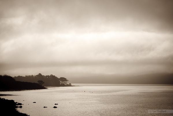 San Francisco & Mendocino 2010