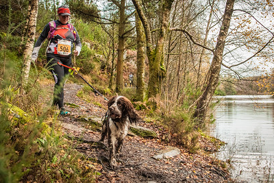 Trail Betws - Canicross 10K Race at 4.5kM