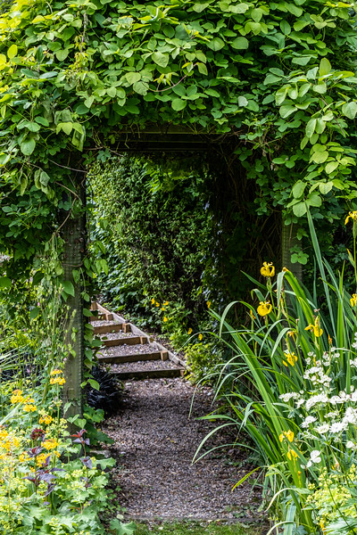 Mickley open gardens 2019-6.jpg