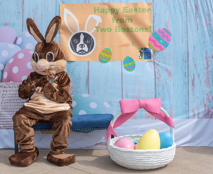 Easter2019TwoBostons-8284.jpg