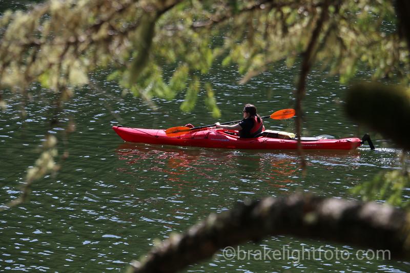 Kayaker on Tod Inlet