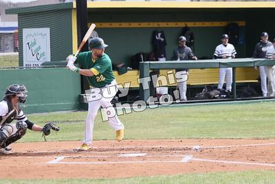 Amateur Baseball 2021