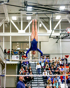 2019 02152018 Gymnastics Section Tournament_02 Hastings