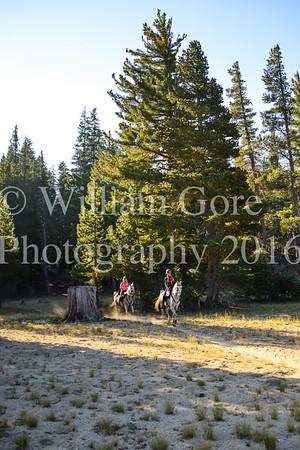 Tahoe Rim ~ Rene Baylor