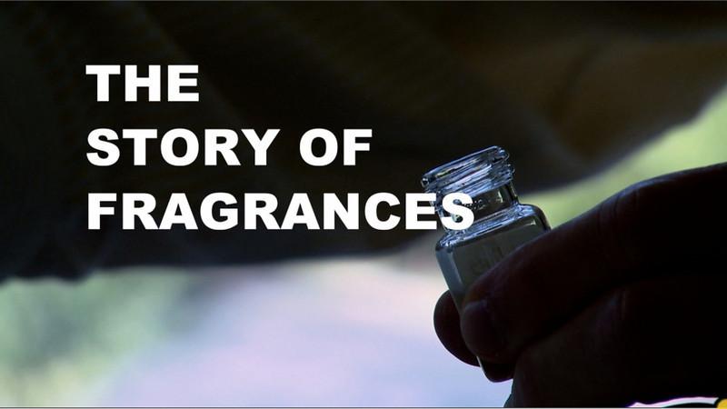 Int'l Fragrance Assoc