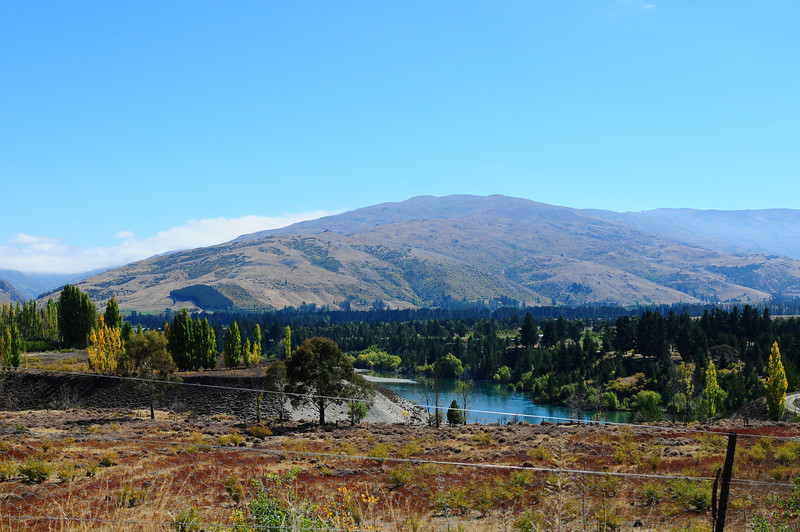 2014_Wanaka_Goldfields      0016.JPG