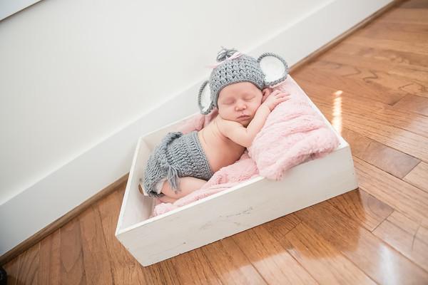 Oaklee Ann Newborn
