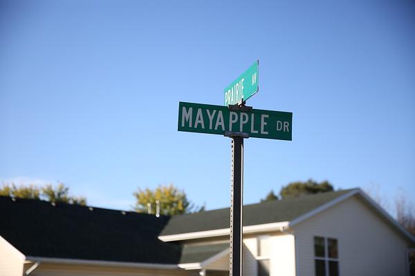Mayapple and Prairie