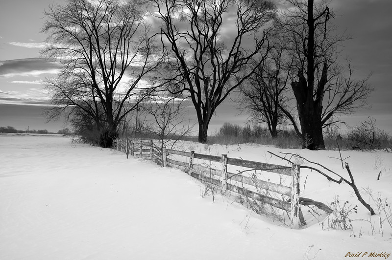Snow Covering