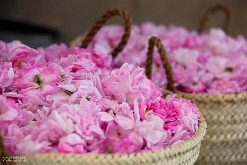 Roses Water (41)-Aljabal Alakhdhar-Oman.jpg