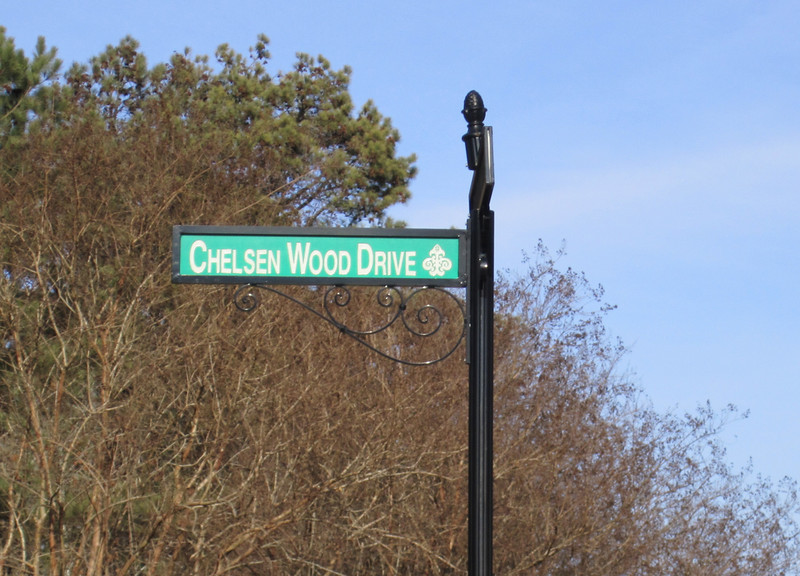 Thornhill Johns Creek Estate Home (18).JPG