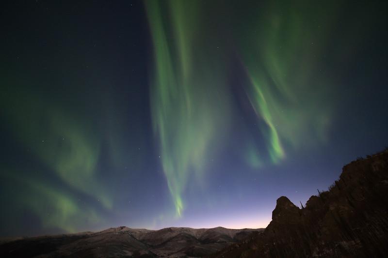 Tall Aurora