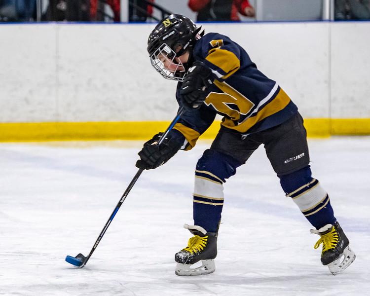 2019-02-03-Ryan-Naughton-Hockey-41.jpg