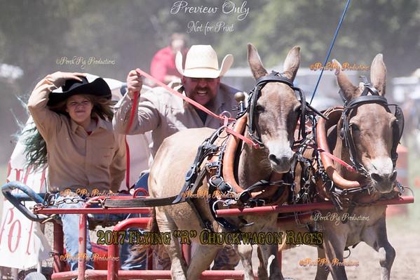 52 mules