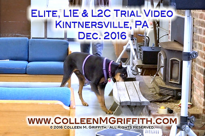 Kintnersville PA Dec 2016 NW Sample Videos