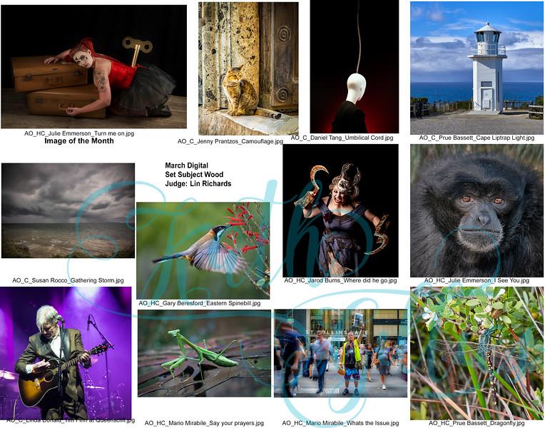 2 march wood digital 1 copy.jpg