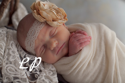 Ivy Newborn