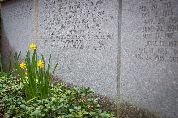 Memorial Garden (2018)